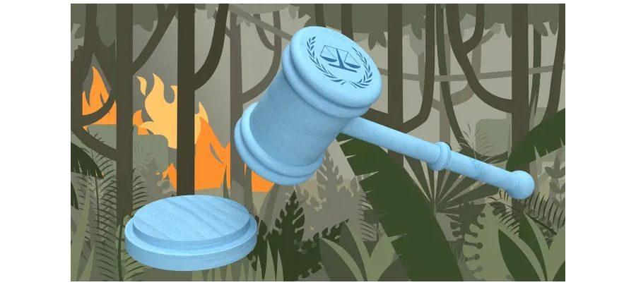 2021-07-01-Telepolis-Ökozid – ein Verbrechen gegen die Menschlichkeit?